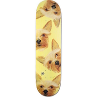 3D SKATEBOARD DECK - ANDERSON COLLIE - 8.125