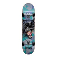 Blind Complete Skateboard Panther FP Soft Wheels Teal 7.625""