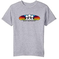 Alien Workshop Youth T-Shirt Spectrum Youth Small Grey